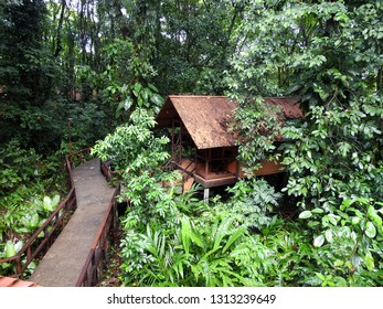 Houses in rainforest. Costa rica.
