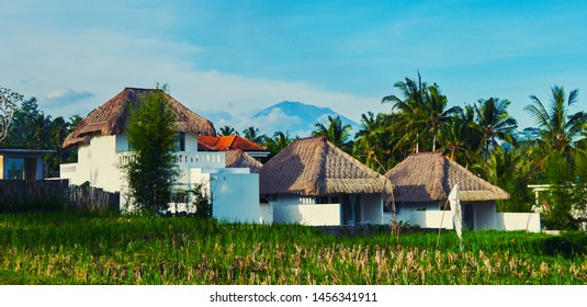 Houses and rice field at balinese village.
