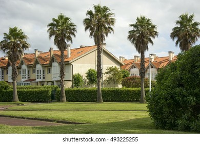 Houses and trees 5