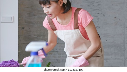 Housewife doing housework at home