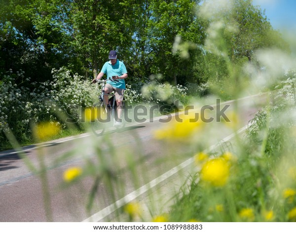 Houten, Netherlands, 9 may 2018: person on bicycle passes blooming flowers on country road between Utrecht and Houten in the netherlands