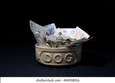 How much is your dog costing you ? A conceptual image portraying the cost of pet ownership