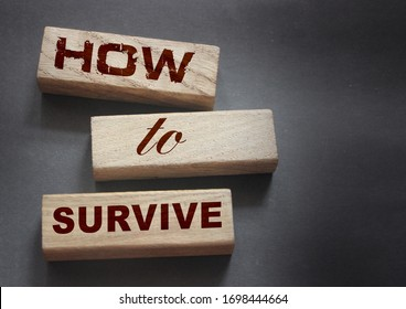 How to Survive words on wooden blocks. Stay alive in wild nature concept. Business startup surviving concept.  Epidemic survival healthcare coronavirus prevention concept.