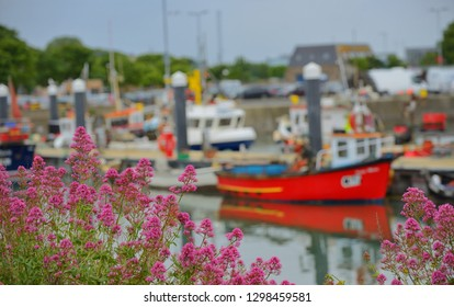 Howth harbour in Dublin, Ireland in summer