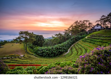 Huai Nam Dang National park in sunrise and beautiful sky in morning, Chiang Mai, Thailand. Majestic sunrise in the mountains landscape.