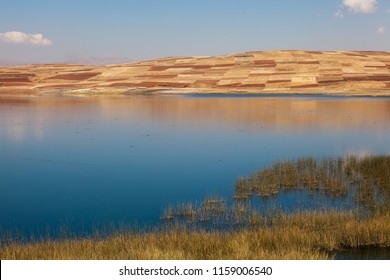 Huaypo lagoon with a beautiful blue sky and dry summer fields, Peru