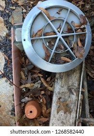 Hubcap and flower pot