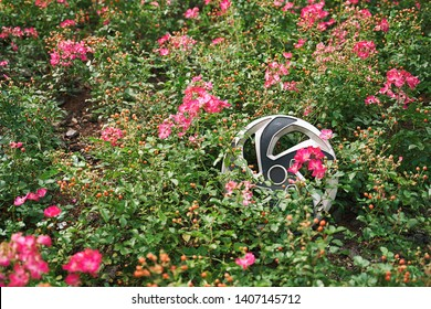 Hubcap or wheel rim cover lying among pink flowers after