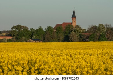Huge abbey church in small village in the middle of a sea of blooming colza