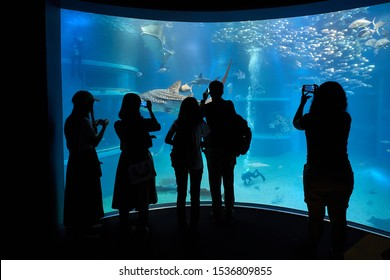 Huge aquarium with sharks, unrecognizable people standing in front taking pictures with phone cameras, divers cleaning the tank