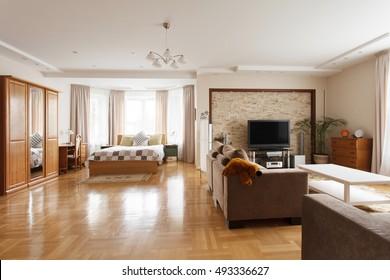 Huge bedroom combined with living room. Interior design