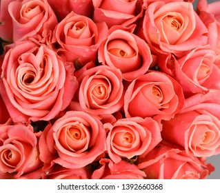 A huge bouquet of pink roses. pink roses background. pink roses horizontal seamless pattern.