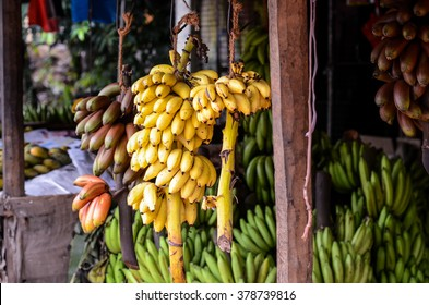 Huge bunches of yellow, red and green bananas on sale at a street shop in Sri Lanka