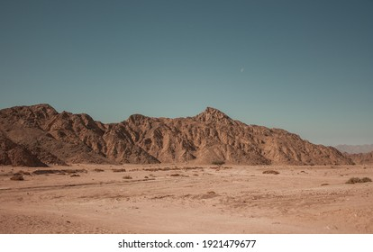 Huge desert dunes in Hammada desert Egypt with rocky mountain scenery. Great place for photographers and travelers. Beautiful sandy barkhan structures. Hammada desert landscape. Egypt. South Sinai.
