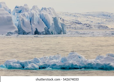 Huge drifting blue icebergs with sitting seagulls at Ilulissat fjord