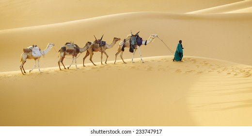 Huge dunes of the desert. Fine place for photographers and travelers. Beautiful structures of sandy barkhans. Caravan and driver.