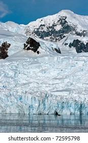 Huge glacier in Paradise Bay, Antarctica