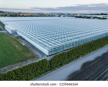 Huge Greenhouses on Farm Land