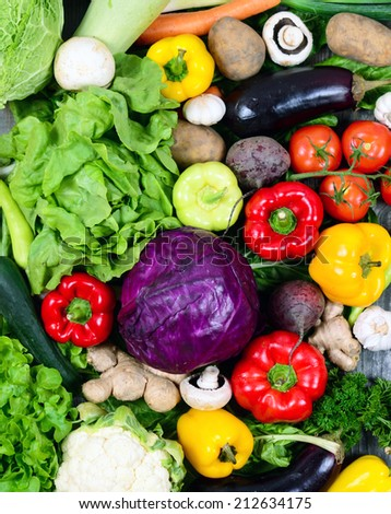 Huge group of fresh vegetables - High quality studio shot