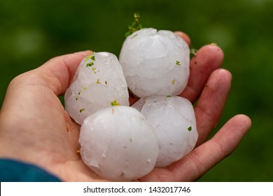 Huge hailstones after a severe thunderstorm in the hand of a young woman