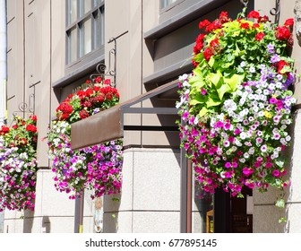 Huge hanging flower baskets decorate  Pioneer Square,  Seattle, Washington
