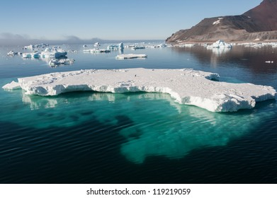 Huge iceberg visible in the water