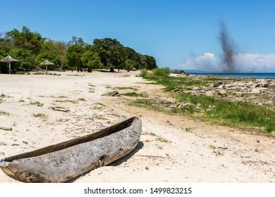 huge pile of Lake flies reaching the Beach of Lake Malawi, Africa