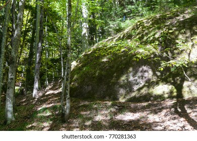 Huge round rock in the sunlit forest