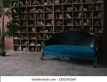 A huge shelving for books and elegant vitage blue sofa. Luxury and chic interior. daylight from window. stylish loft interior. plant in pot