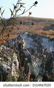 Huge spider web hanging on a plant in the bogs of Connemara, stone wall net to it and beautiful landscape scene in the background