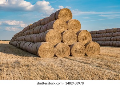 huge straw pile of Hay roll bales on among harvested field. cattle bedding