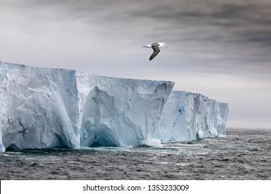 Huge Tabular iceberg in the Antarctic.