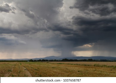 Huge thundercloud over a wheat field wih the city of Frankfurt in the distance, Germany