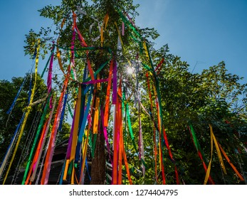 A huge tree in Thailand with lots of colorful ribbons hanging straight towards the ground. The sun is behind the tree.