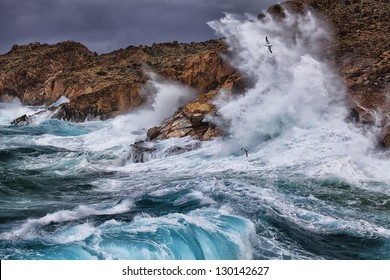 Huge waves crashing on the rocks of Syros island, Greece. The seagulls enjoyed it highly.