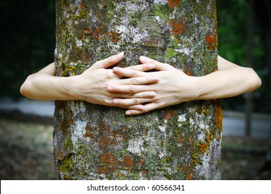 Hugging the Nature