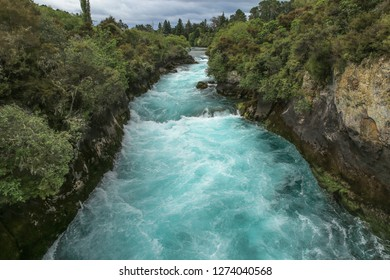 The Huka Falls on the Waikato River in New Zealand. View from the lookout to a white water flowing through a narrow volcanic gorge, lush green native bush on the river banks, overcast.