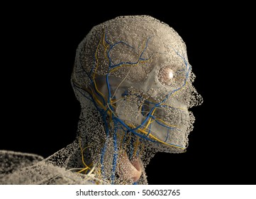 Human anatomy head covered in network of dots. Bio-tech skin, disease or molecular biology. Sensory points or cells. 3D illustration.