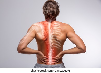 Human back anatomy, man holding his hand in the back pain area