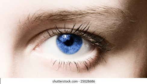 Human blue eye. macro shooting