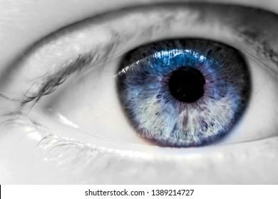human blue eye macro view
