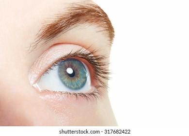 Human, blue healthy eye macro on white background