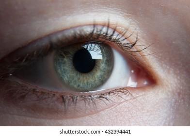 human body - detail of eye