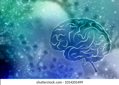 Human brain 2d illustration