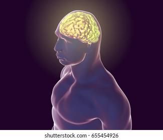 Human brain inside body isolated on black background, 3D illustration