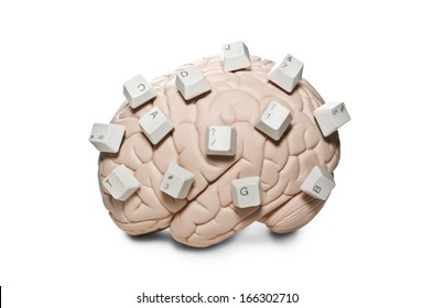Human brain model with computer keys placed on it