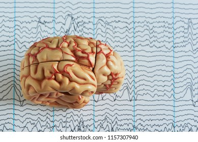 Human brain model on background of brain waves from electroenchalography