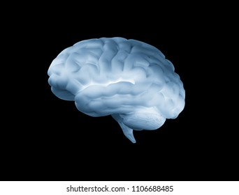 Human brain on black background 3d render