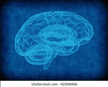 human brain on blue grid background. 3d illustration