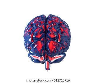 Human brain with transparency chanel, isolated on white. Concept 3d render, illustration